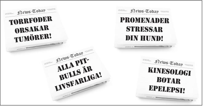 tidning_stor